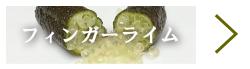 国内産(広島県江田島市産)フィンガーライム