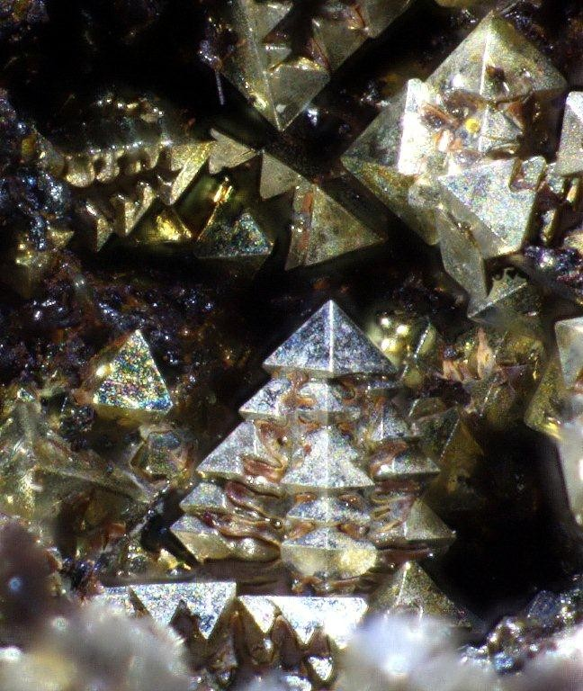 ged, Silber, Ofensau Innerste Tal, Harz; Bildbreite 4mm