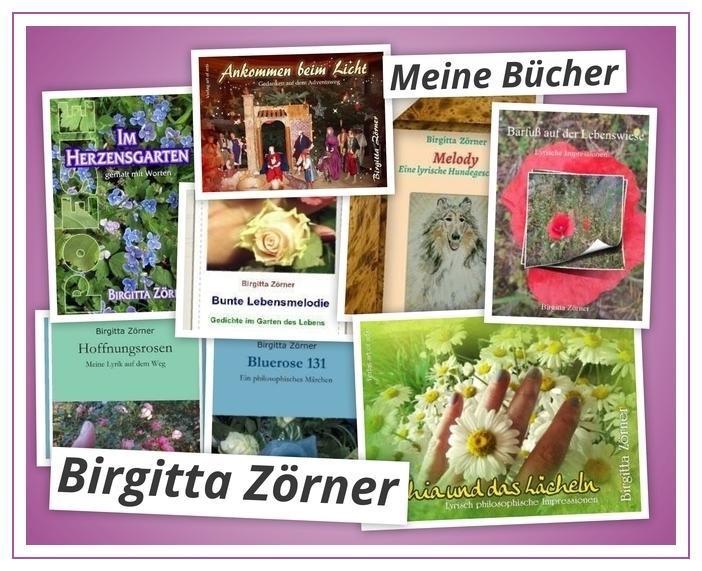 Eintauchen In Meine Bücher Birgittas Poesie Webseite
