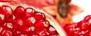 Fruchtsaft-Konzentrat