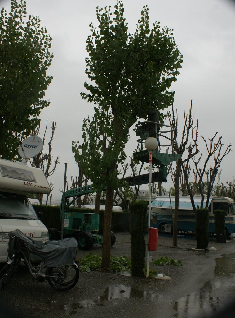 Richtig trist und jetzt werden die Bäume noch entlaubt. Solch ein Kran hätte Alois brauchen können für seine Arbeiten in Sarmenstorf