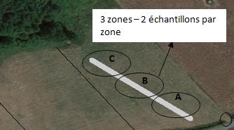 Zones de prélèvement des échantillons d'herbe