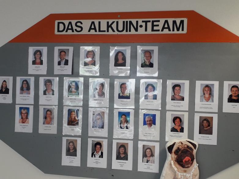 """Neuer Kollege - frech und hübsch: """"Alkuini, Modellmops"""""""