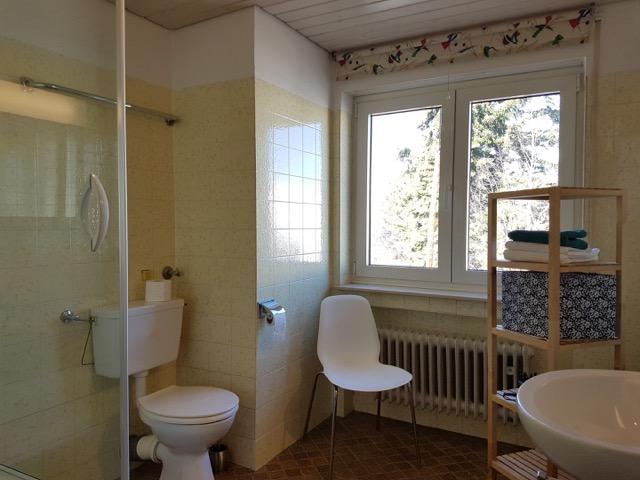 Geräumiges Badezimmer mit Dusche