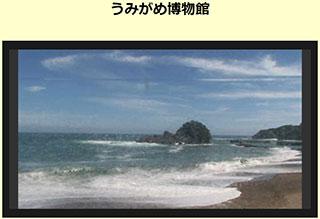 サーフィン波情報-無料ライブカメラ-大浜海岸-うみがめ博物館-サーファーズオーシャン