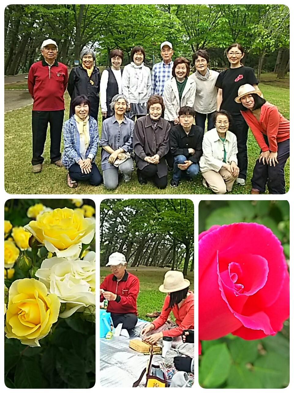 寺尾公園はバラも笑顔も満開🎵