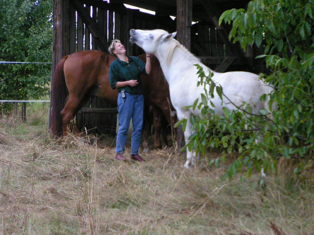 2 Pferde mit Frauchen in Bittelbronn