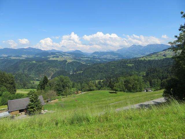 Erstes Bild in Österreich geknipst