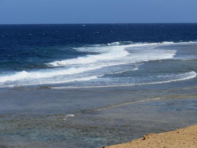 Blick über das Riffdach auf das Roten Meer