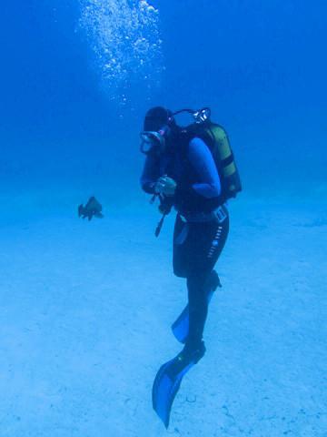Sie schwamm rückwärts und er folgte ihr   :-)