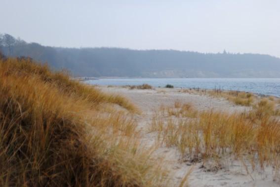 Blick von der Düne zur Steilküste /Noer