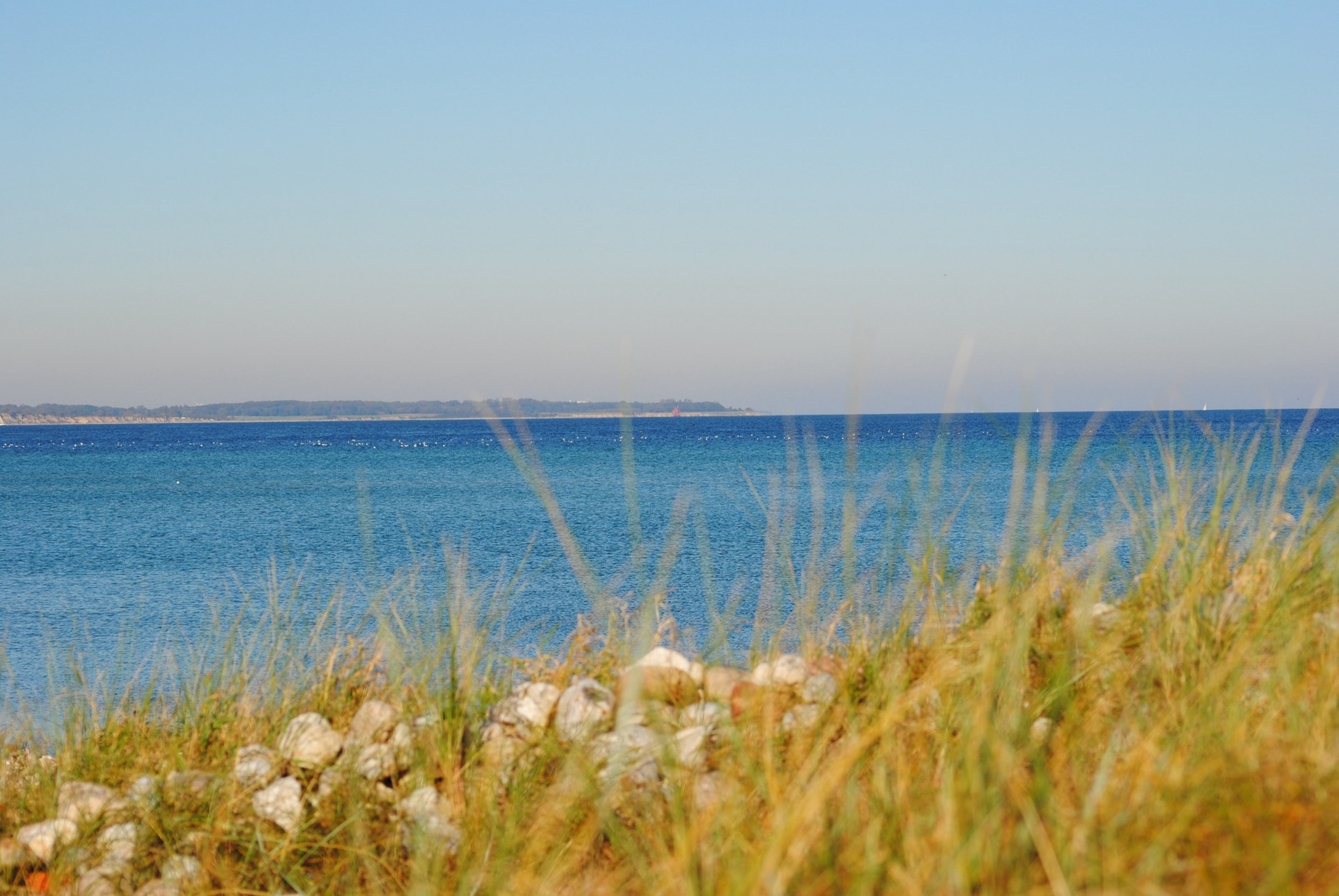 Blick über die Düne in die Eckernförder Bucht