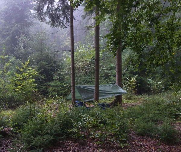 Übernachtung im Wald