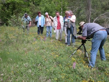 Gemeinsam Natur beobachten und schützen