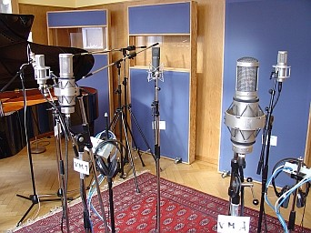 all the nicest mics_vovox / brauner workshop_gamma recording untersiggenthal