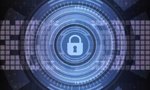 """Haltt: """"Städtische Cybersicherheit gehört auf die Tagesordnung."""""""