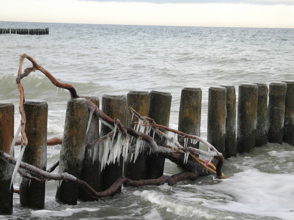 Januar 2011 am Strand