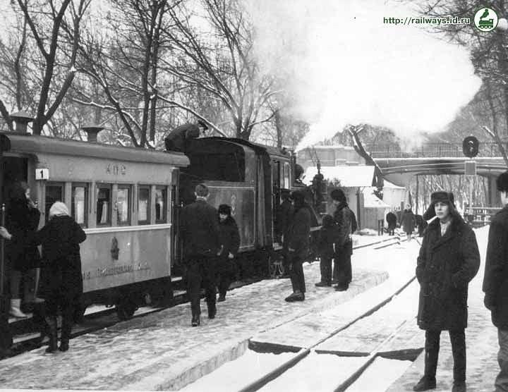 Поїзд з паровозу ЮП-4-95 та двовісних вагонів