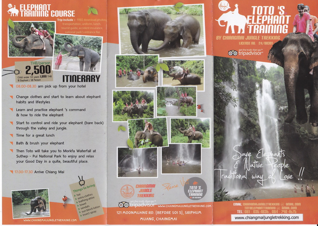Toto's Elephant (Training)