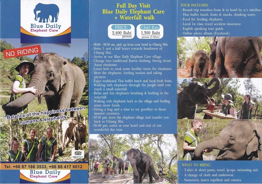 Blue Daily Elephant Care