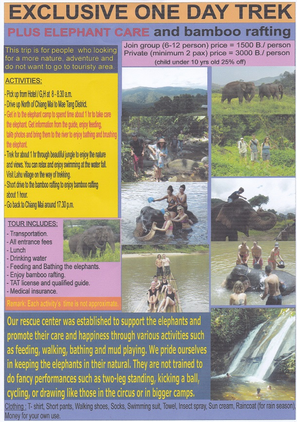 1day Mae Taeng Trek+Elephant Care+Bamboo Rafting