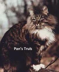 Pan's Truls