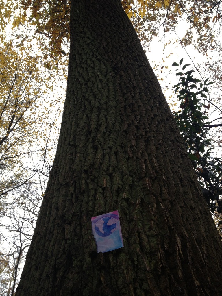 L'arbre de Guérison
