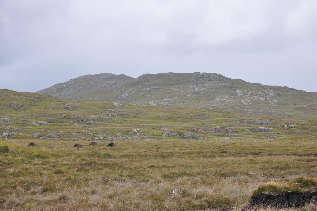 Mont vu de la tourbière