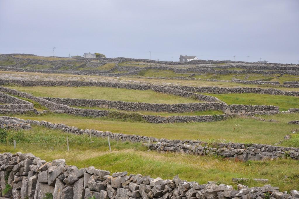 Parcelles de terre entre murs de pierre