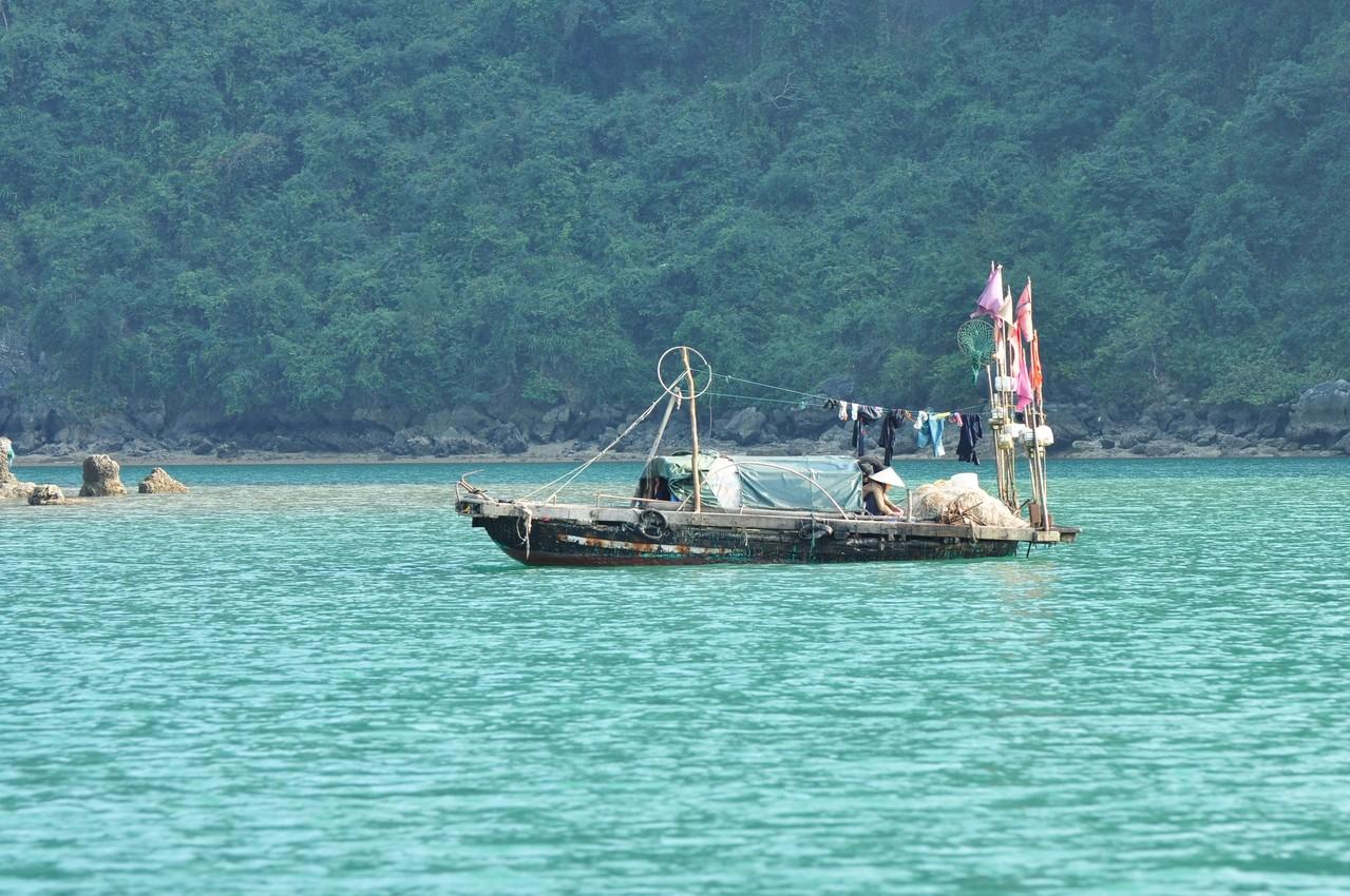 Baie d'Halong : bateau de pêche