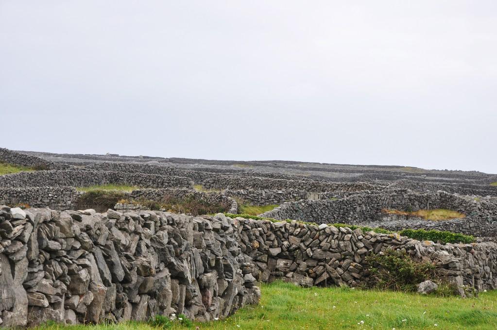 Murets de pierre à perte de vue