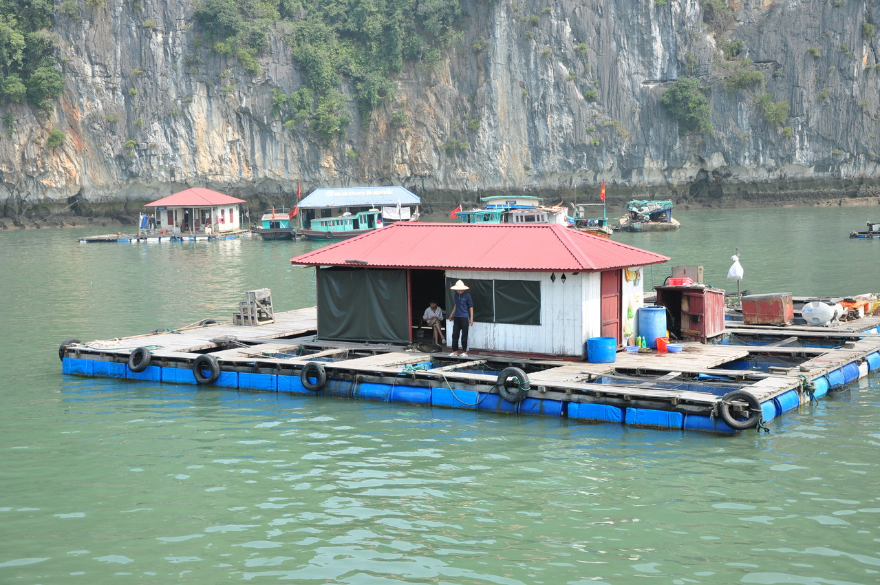 Baie d'Halong : village flottant