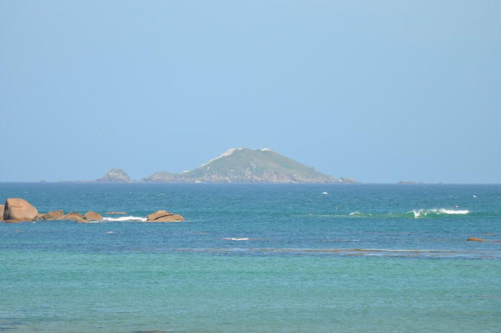 L'île Rouzic vue de la côte, et sa blanche colonie de fous de Bassan