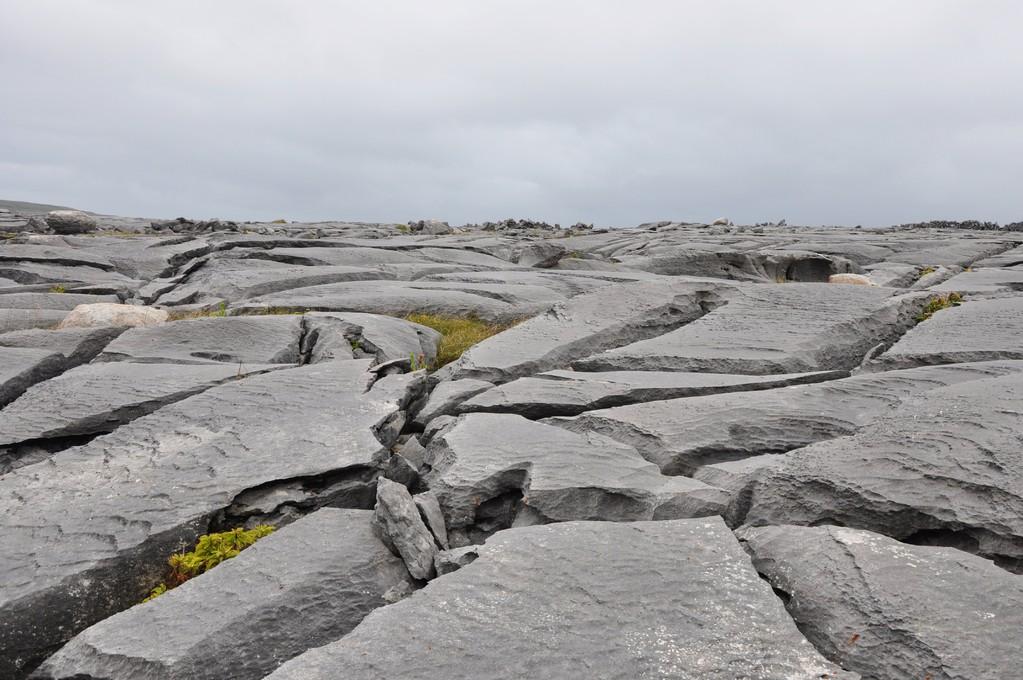 Dalles calcaires ravinées par l'eau