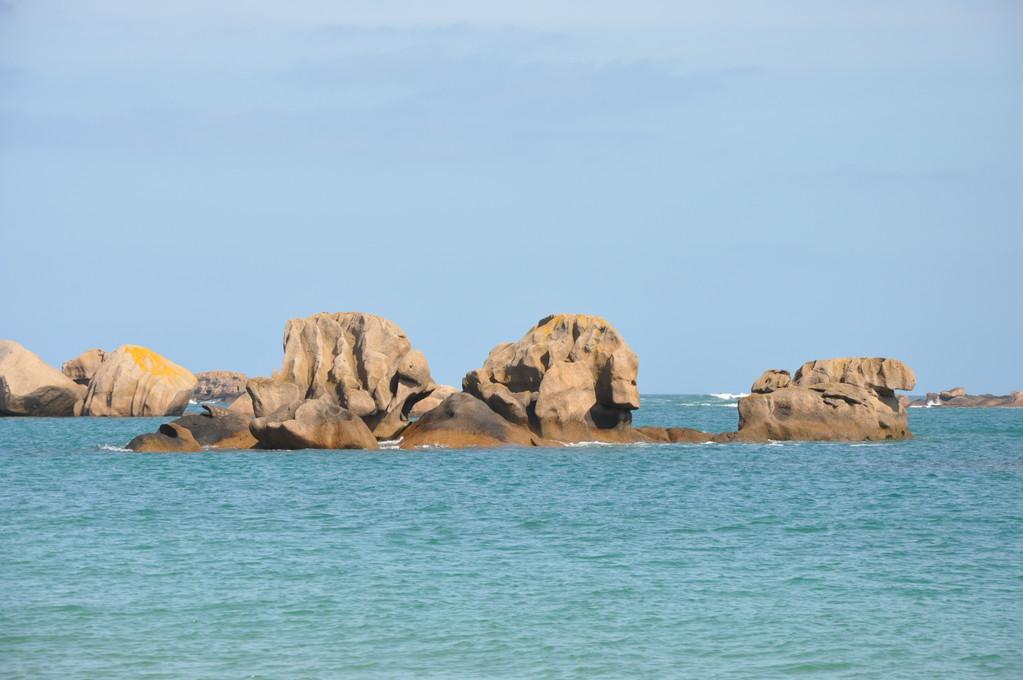 La mer présente ses oeuvres d'art.