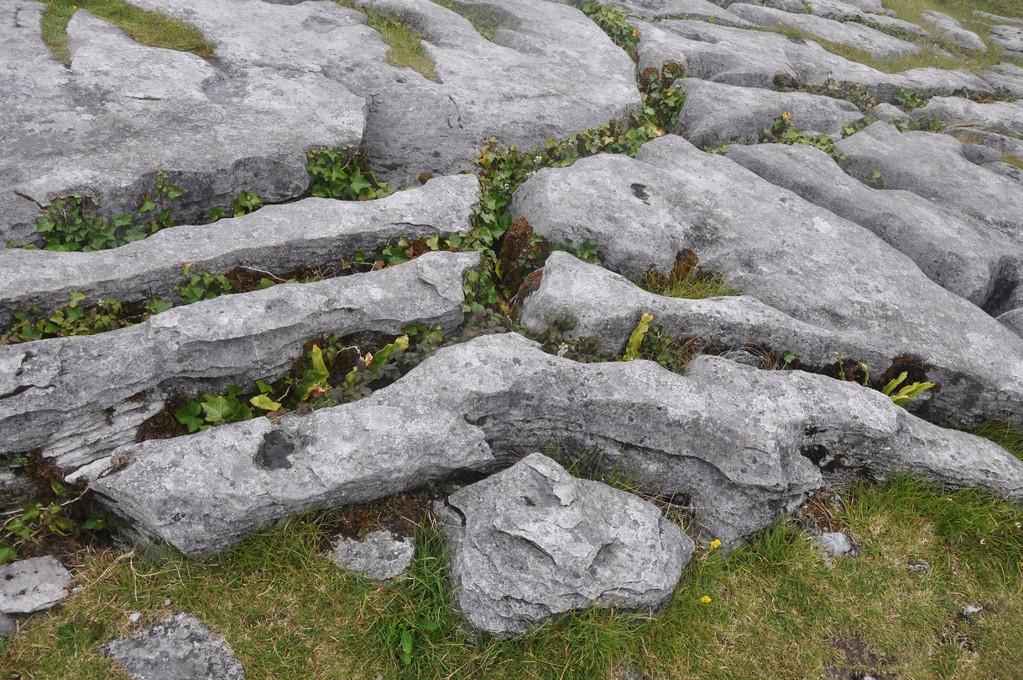 Relief tourmenté des roches de Burren