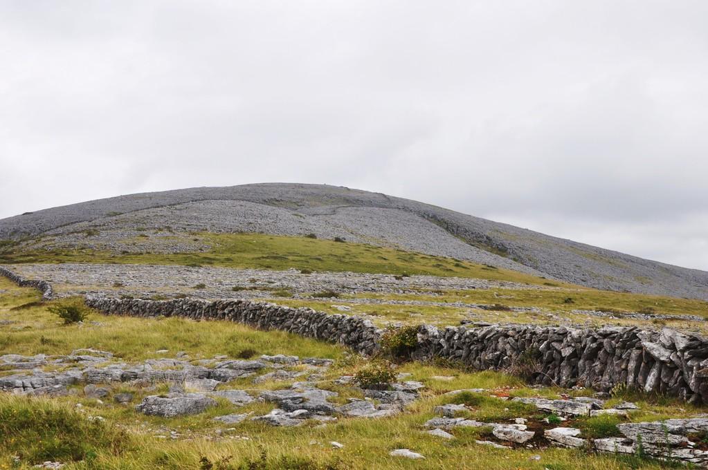 Abbey Hill entourée de murets de pierre