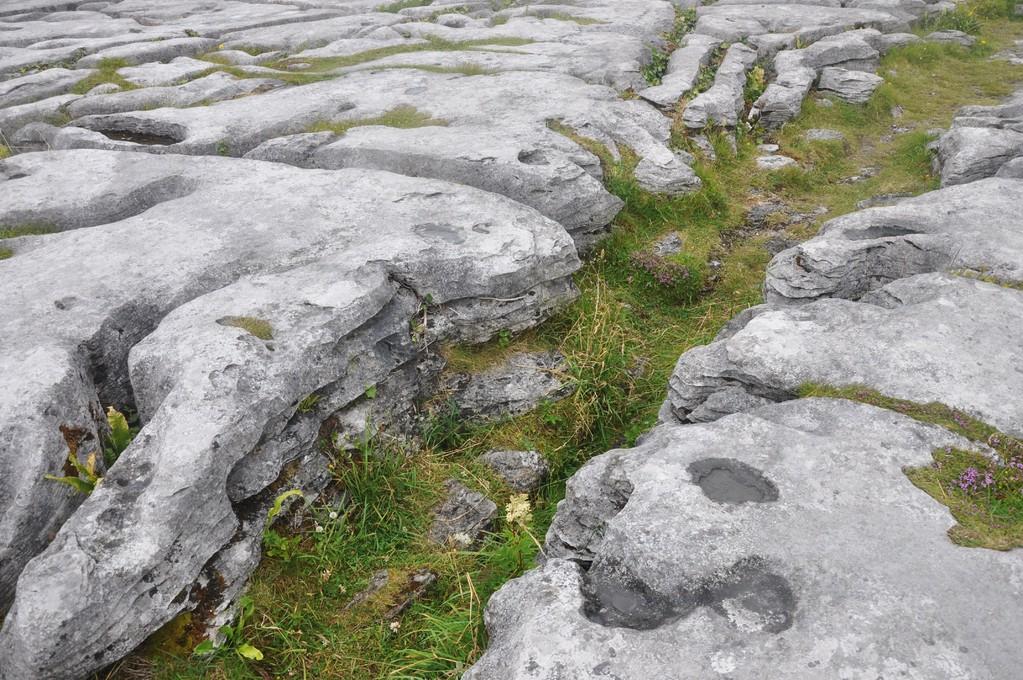 Roches calcaires creusées par l'érosion