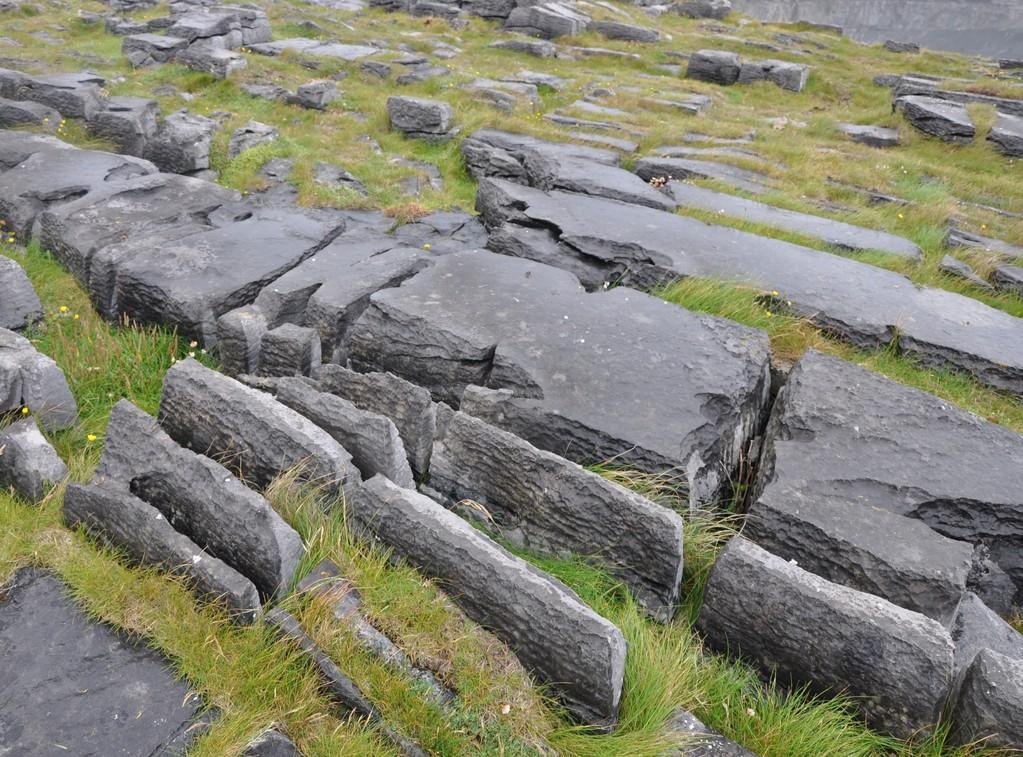 Un sol fait de dalles calcaires