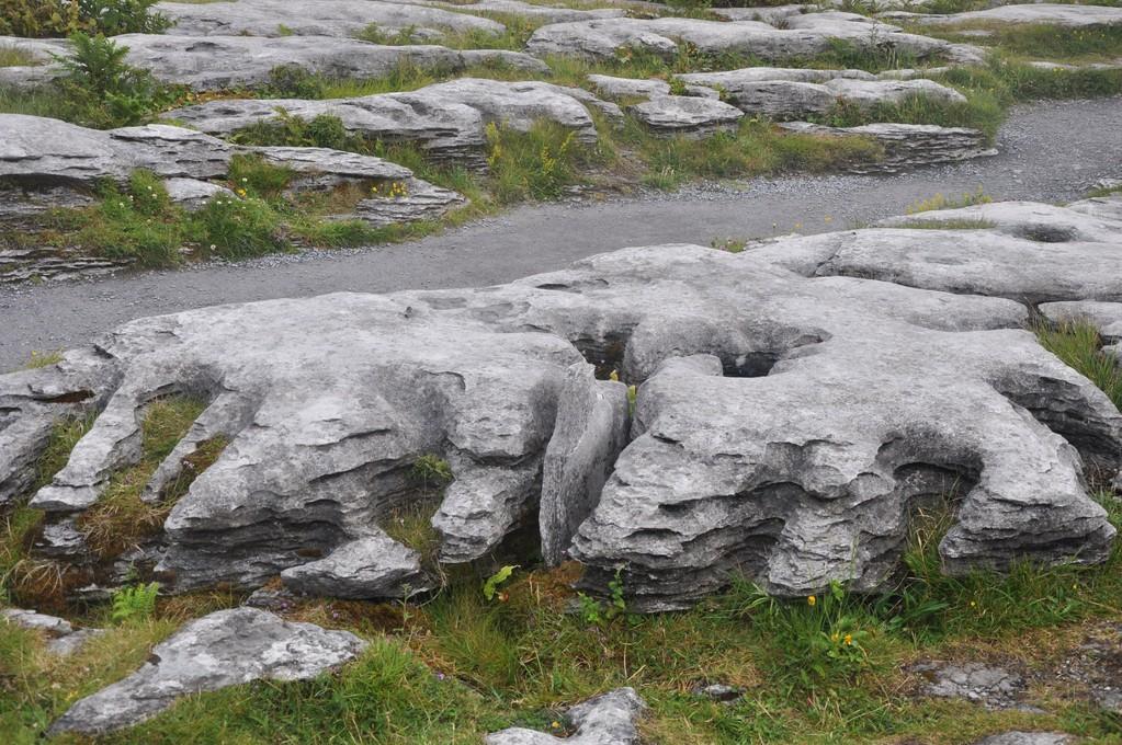 Plateau karstique désertique du Burren