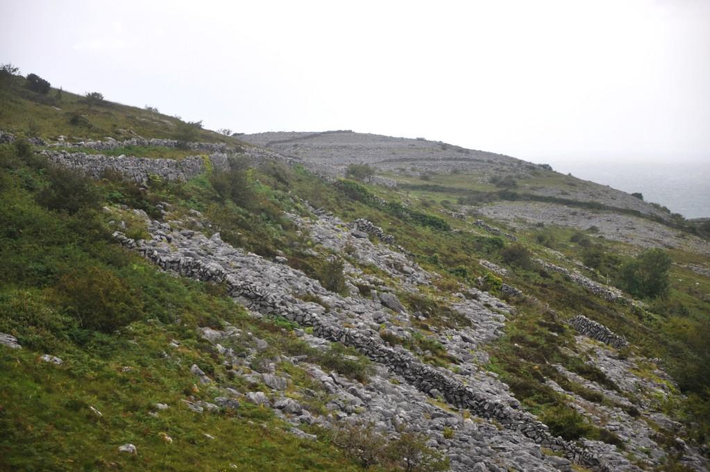 Abbey Hill, site qui donna son nom à un théâtre célèbre de Dublin