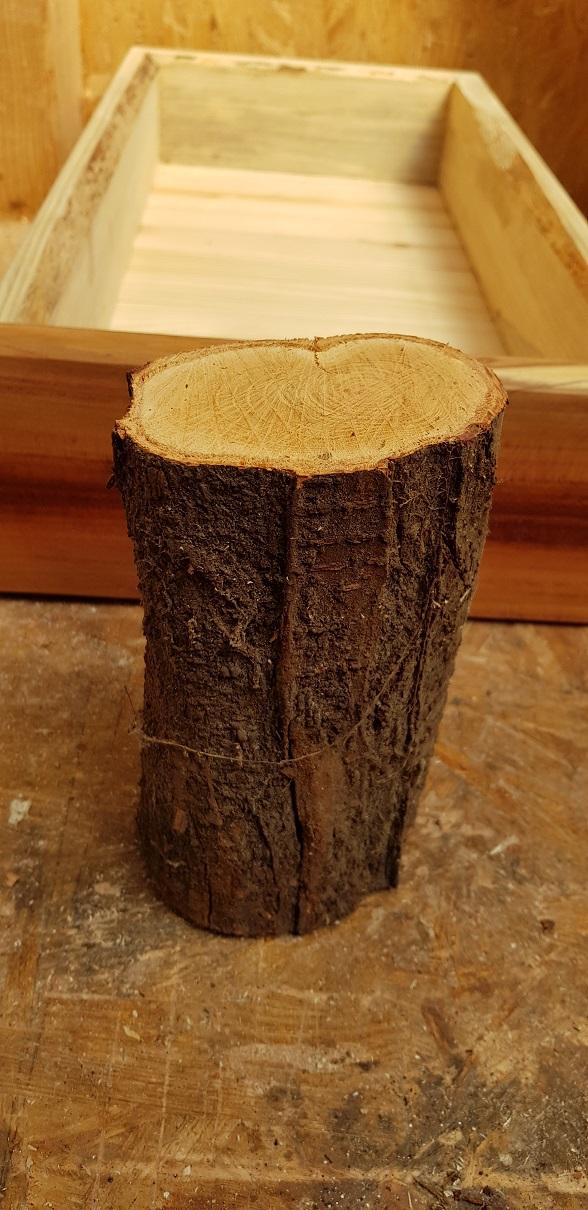 Pfaumenholz für das Drechsen des Schubladenknopfes.