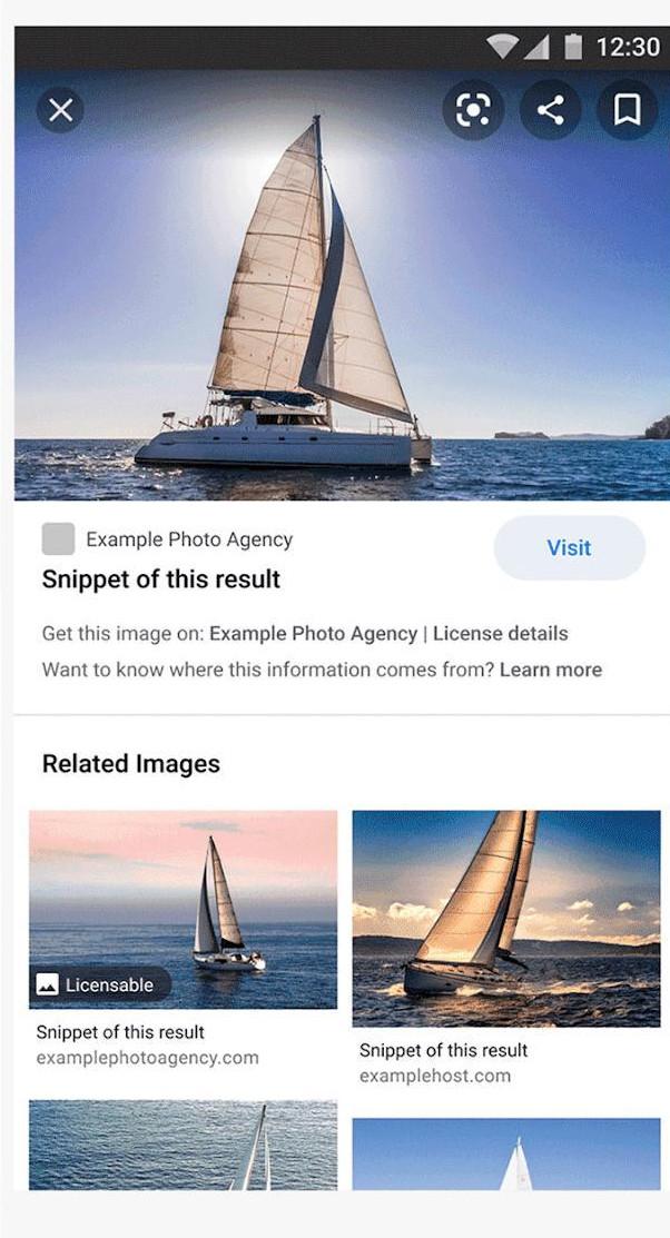 Программа просмотра изображений. Показывает лицензируемое изображение с новыми полями.