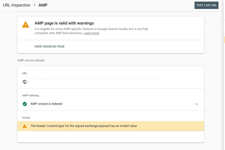 Отчёт «Сведения об AMP-версии» от инструмента проверки URL