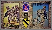2-5 US Cavalry/10th Mountain Div.