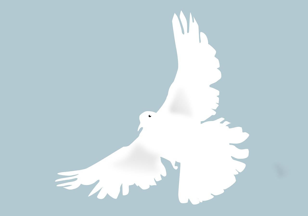 Die weiße Taube und die heilige Geistin
