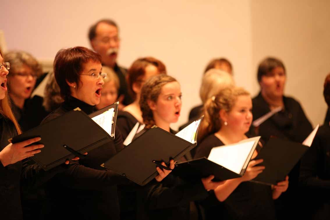 Sänger und Freunde des Bonner Vokalensembles. Foto: Hai Cheng, Bonn