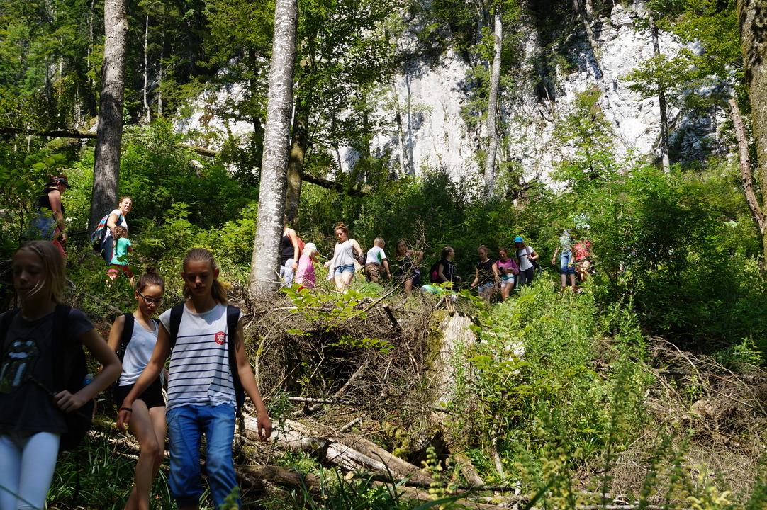 Foto von einer spektakulär aussehenden Wanderung. Waren aber nur ein paar Meter.