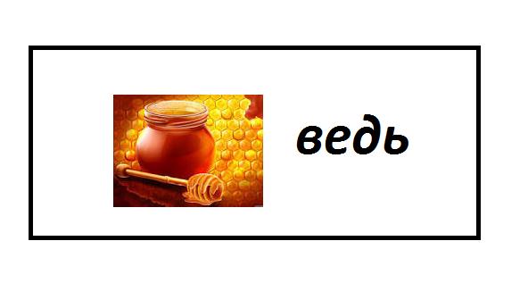 Автор:  Стеценко Екатерина