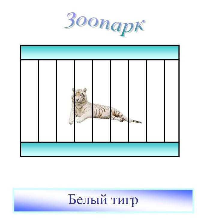 автор: Серёгина Варвара